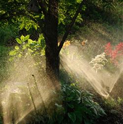 Sprinkler Repair Burlington County Nj